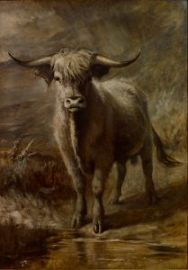 The Highlander - 19th Century Oil Painting of Scottish Highland Bull Image